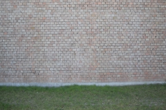 The yellow brick wall